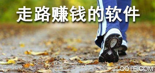 步数礼App官方版