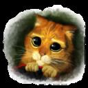 猫咪世界appv1.0 最新版