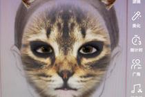 抖音很火的猫脸特效在哪里 抖音App小花猫特效怎么拍摄