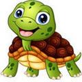 养龟赚钱app最新版v1.0.1 安卓版