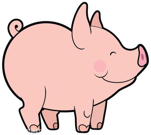 国民养猪快速体现版v1.0 安卓版