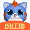 纷红猫最新赚钱手游v1.0 安卓版