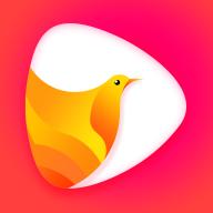 鸽迷v1.0.2 安卓版