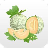 哈密瓜v1.0.0 安卓版