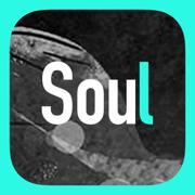 Soulv3.8.37 苹果版