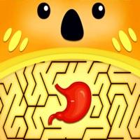 完美迷宫杂耍IOS端游戏v1.0 iPhone版