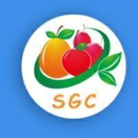 水果联盟SGC挖矿v1.0.0 安卓版