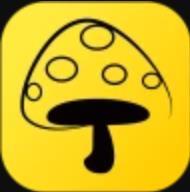 蘑菇丁自动打卡版V3.1.1 特别版
