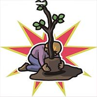 福气果种树App安卓版v1.1.1 最新版