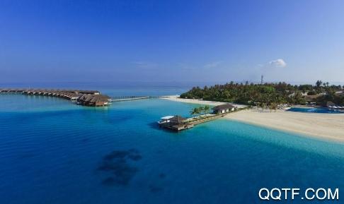 海洋之家岛屿生存汉化无限金币版