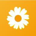 菊花赚做任务赚钱app安卓版v1.0 最新版