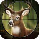 丛林狩猎赚钱appv1.0.2 安卓版