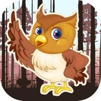 猫头鹰智娱最新ios版v1.0 iPhone版