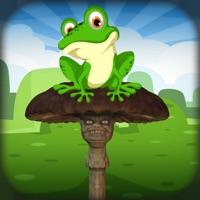 神奇跳跃蛙官方ios版v1.0 iPhone版