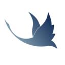 雁回app最新版v1.0 安卓版