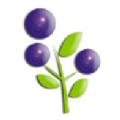 蓝莓资讯(转发赚钱)app官方版下载-蓝莓资讯(转发赚钱)app官方版v1.40最新版下载