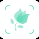 形色识花app官方版下载-形色识花app官方版v3.13.5最新版下载