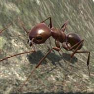 蚂蚁模拟破解版v3.3.4 最新版