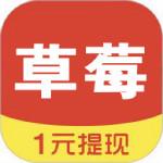 草莓看点app最新版v0.2.62