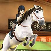 马术传说模拟游戏v29 安卓版