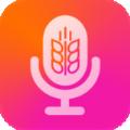 麦浪视听app官方版v1.0 最新版