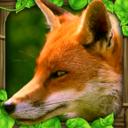 红狐游戏app最新版v1.0.0