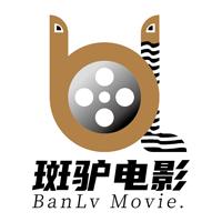斑驴影评影音appv3.0.5