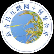 高青县互联网+村务公开最新版v1.0.0 安卓版