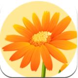 小华花圃养花赚钱游戏v1.0.0 最新版