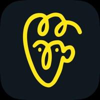 Avatarify抖音蚂蚁呀嘿特效变脸appv1.0 最新版