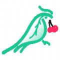 青鸟鲜享app安卓版v1.1.2