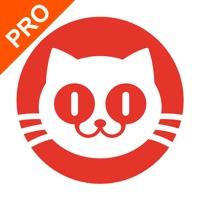 猫眼专业版实时票房appv6.2.4 最新版