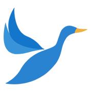 大雁资讯app安卓版v1.41 最新版
